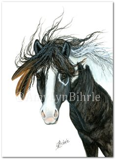 Majestic Horse - Black White Pinto War Paint Native Feathers Art - Prints by Bihrle mm96