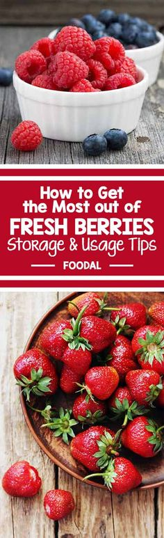 Are you storing your berries correctly? If yours are going bad before you get a chance to eat them, then this post is for you. Learn proper storage and a few tricks so you never waste a single blueberry, strawberry, raspberry or blackberry again. If you love berries as much as we do, you'll want to check out this post for our top tips! Find out more now. http://foodal.com/knowledge/how-to/store-berries/