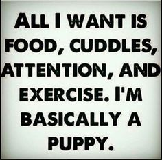 30 Funny Snappy and Hilarious Quotes - # gym Humor 30 Funny Snappy and Hilarious Quotes - Gym Humour, Workout Humor, Fitness Humor, Workout Sayings, Fitness Tips, Exercise Humor, Health Fitness, Fitness Shirts, Workout Diet