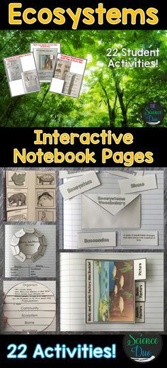 Bring engaging and interactive activities into your classroom with these science notebook pages. This resource contains 22 different interactive notebook activities covering energy flow in ecosystems adaptations organism relationships and much more! 4th Grade Science, Middle School Science, Elementary Science, Science Classroom, Science Education, Teaching Science, Science Activities, Interactive Activities, Science Experiments