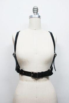 Basic Harness