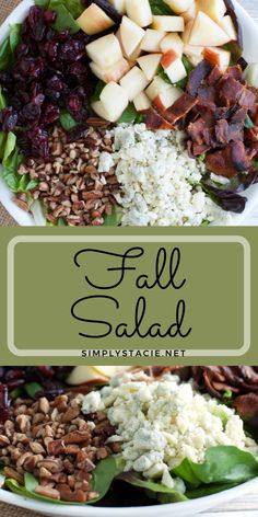 Fall Salad - You'll love this hearty salad with its autumn flavors! It's packed full of goodness with Honeycrisp apples, pecans, dried cranberries, blue cheese and an oh so tasty warm bacon vinaigrette dressing.