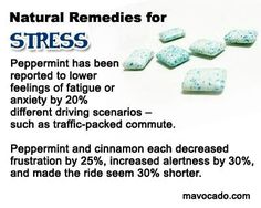Natural remedies for stress How To Ease Anxiety, Stress And Anxiety, Anxiety Relief, Health Tips, Health And Wellness, Health Fitness, Natural Remedies For Stress, Stress Less, Reduce Stress