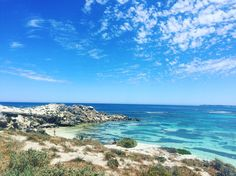 Heaven on Earth. The most beautiful sights during my bike ride around Rottnest Island. @rottnestislandwa @australia @perthtodo #australia #rottnestisland #beaches #paradise #perth #wa #wanderer #contikichar #chilbochaggins #chazzwozzadownunda #quokkas by charchartree http://ift.tt/1L5GqLp