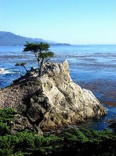 Pebble Beach Photos - Featured Images of Pebble Beach, Monterey County Pebble Beach California, Carmel California, Places In California, Monterey Peninsula, Monterey County, Beach Pictures, Dream Vacations, Places Ive Been, Trip Advisor