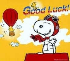 Good luck! Peanuts Cartoon, Peanuts Snoopy, Good Luck Pictures, Flying Ace, Joe Cool, Snoopy Quotes, Cartoon Tattoos, Charlie Brown And Snoopy, Snoopy And Woodstock