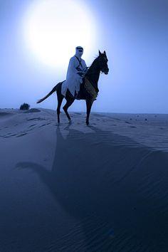 Arabian horse & rider by Moonlight Desert Sahara, Desert Life, Desert Plants, Arabian Nights, People Of The World, North Africa, Moonlight, Safari, Deserts