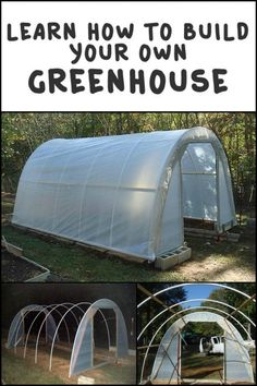 Every thought about how to house those extra items and de-clutter the garden? Building a shed is a popular solution for creating storage space outside the house. Whether you are thinking about having a go and building a shed yourself Greenhouse Supplies, Cheap Greenhouse, Build A Greenhouse, Greenhouse Growing, Greenhouse Wedding, Greenhouse Gardening, Greenhouse Ideas, Outdoor Greenhouse, Homemade Greenhouse