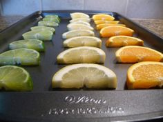 Frozen Citrus Slices...keep drinks cold and tasty!