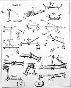 Page of one of the first works of Biomechanics (De Motu Animalium of Giovanni Alfonso Borelli) in the 17th century