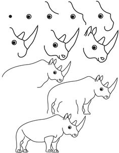 Image of: Step Drawing Rhinoceros Sea Animals Drawings How To Draw Steps Learn To Draw Drawing Pinterest 609 Best Draw Zoo Animals By Images In 2019 Learn To Draw