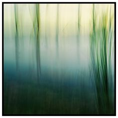 Fade Out (2016).  Dreams float through as colours, Fade out to white.  Cohuna, Vic. Australia. Words & Image: © Gary Light (9402, Dec 2016). Creative Commons: (CC BY-NC-ND 4.0).  #photography #art #technique #ICM #nature #australia