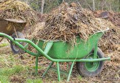 Welke bemesting heb je nodig voor de tuin? Prunus, Wheelbarrow, Geraniums, Compost, Garden Tools, Lawn, Composters, Peach, Outdoor Power Equipment