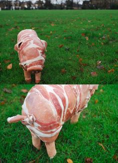 Trapped by their original purpose. Life sized piglet made out of bacon and sausages by Sophieh Powell & Bonnie Moriarty