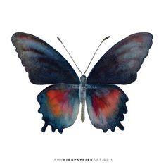 49 Parides Orellana Butterfly Original or by AmyKirkpatrickArt