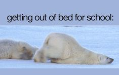 This is me everytime I get out of bed