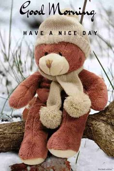 Cute Teddy Bear And Love Wallpapers Download For Mobile 3 Hd
