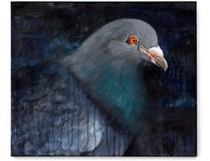pigeon paintings - Google Search Creative Portraits, Texture Art, Acrylic Art, Pigeon, Pet Birds, Animal Kingdom, Street Art, Drawing, History