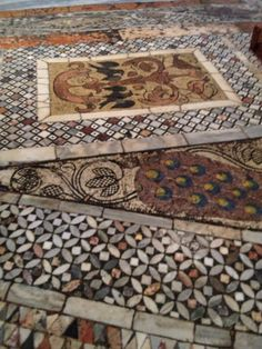Mosaic floor - St Marks Cathedral Venice, Italy