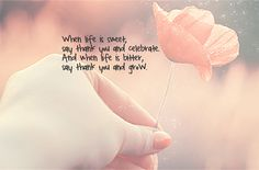 Life is something to be terribly grateful for. Repinned from Tara Liddicoat.