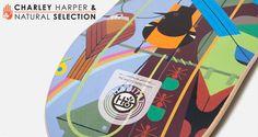 Habitat-Skateboard-Charley-Harper-Monteverde-Collab-2013-portada