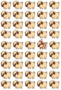 Where's Pugliepug