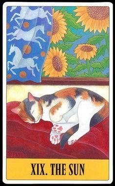 Tarot pour les chats de Kipling West - Le Soleil