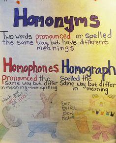 homonym anchor chart homophones vs homographs more homonyms homographs ...