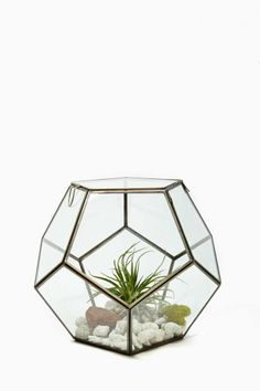 For those who love to craft as well as those who love to garden, give them a marvelous new place to play: Pierre Faceted Terrarium via @NASTY GAL #terrarium #terrarium_crafting #terrarium_building