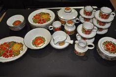 Set of 48 Midwinter Nasturtium Stonehenge Orange Red Flowers