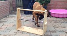 This toy is super simple: 3 boards, 3 bottles, a steel rod, some screws, and some treats. Dogs love it!