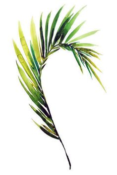 Fine art print Palm frond - tropical leaf art, watercolor painting, beach art…