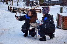 Imposible resistirse a hacerse una foto. Trineo de perros. Laponia noruega