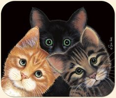 Peeping TOMS Cat MousePad Heaps more gift ideas here: http://www.catthemedgifts.com #cats #catgifts #catlovers