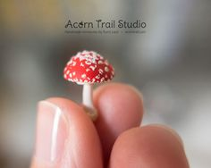 One of a kind, completely hand made, and very fine detailed, ultra realistic miniature Amanita mushroom in 1/12 scale.  This tiny mushroom would make