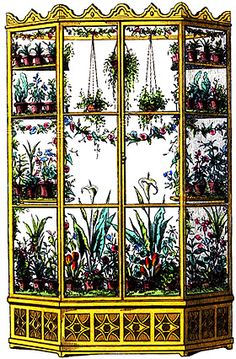 Window Garden | Windows Garden | Indoor Gardening