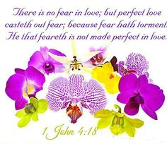 1 John 4:18.  ...perfect love casts out fear.