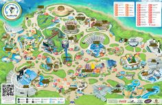 SeaWorld San Diego Review from DLRPrepSchool.com