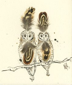 Owl illustration by Anna Wright