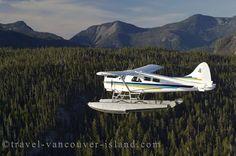 Beaver on floats Beaver Shot, Bush Pilot, Sea Planes, Bush Plane, Airline Pilot, Float Plane, Flying Boat, Aviation Art, Rockets