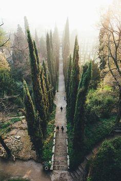 Verona, Italy by Hercio Dias