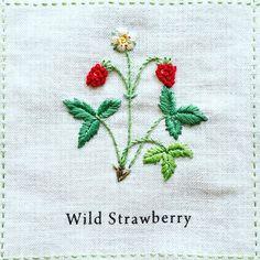 2016.07.27 wed + Wild Strawberry「ワイルドストロベリー」 + サテンステッチで葉を刺すときのポイント。 できるだけ糸の運びを斜めに鋭く刺すと、 葉脈の雰囲気が出てうまくいく、 と先生よりアドバイス。 なるほど! たしかに斜め具合を意識すると、 いつもより上手くいきました♪ + #刺繍 #青木和子 #ホビーラホビーレ #庭図鑑のモチーフクロス