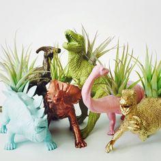 Personnalisez votre propre dinosaure grand planteur + Air plante ; Planteur de dinosaure ; Décor à la maison ; Accessoire de bureau ; Planteur de bureau ; Cadeau ; Dortoir