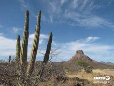 Alitpiano, Baja #California.