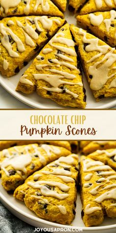 Chocolate Chip Pumpkin Scones - easy and yummy Fall pastry! A tasty sweet treat for breakfast, afternoon tea, snack or even dessert. Crumbly, buttery and moist pumpkin flavored scones filled with chocolate chips and maple icing. Pumpkin Chocolate Chip Scones Recipe, Pumpkin Scones, Pumpkin Spice, Chocolate Recipes, Acorn Squash Recipes, Pumpkin Pie Recipes, Bread Recipes, Brunch Recipes, Fall Recipes