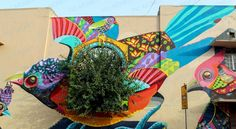 Pretty street art in Delhi depicting the most colourful bird you'd have ever seen