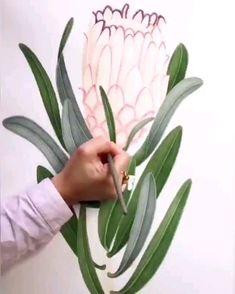 Leaf Drawing, Plant Drawing, Watercolor Plants, Watercolor Art, Fleur Protea, Vintage Wedding Invitations, Hare, Painted Rocks, Flower Art