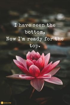 I Have Seen The Bottom Now Im Ready For The Top I have seen the bottom Now I'm ready for the top. The post I Have Seen The Bottom Now Im Ready For The Top appeared first on Easy flowers. Positive Affirmations, Positive Quotes, Motivational Quotes, Inspirational Quotes, Top Quotes, Great Quotes, Life Quotes, Lotus Flower Quote, Lotus Flower Meaning