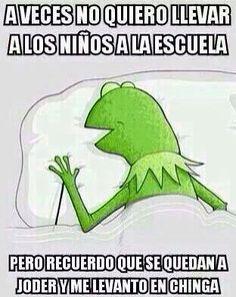 Los mejores memes de la rana René para compartir en Facebook ⋮ Es la moda