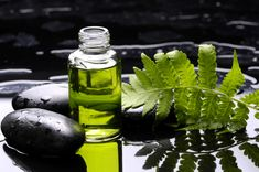 Les pellicules dans vos cheveux provoquent une démangeaison du cuir chevelu ? Vous avez besoin d'un anti pelliculaire ! Heureusement nos grands-mères sont là pour vous donner la solution. Voici leur recette anti pelliculaire aux huiles essentielles, naturelle et efficace contre les pellicules.
